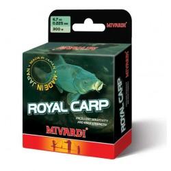 Royal Carp 300 m
