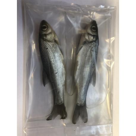 Nástražní rybičky - konzervované stříbrné