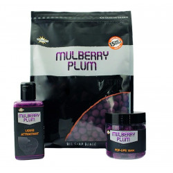 Dynamite Baits Boilies Mulberry Plum Hi-Attract 1kg